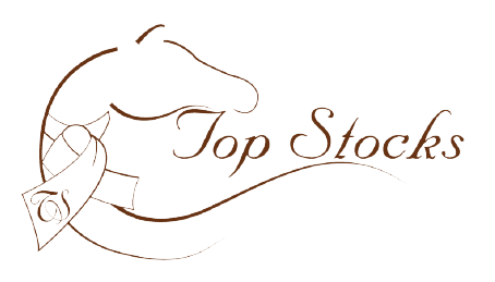 Top Stocks Logo